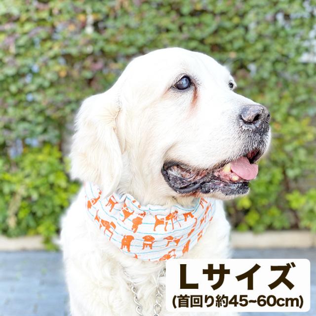 盲導犬チャリティーひんやりスヌード オレンジLサイズ