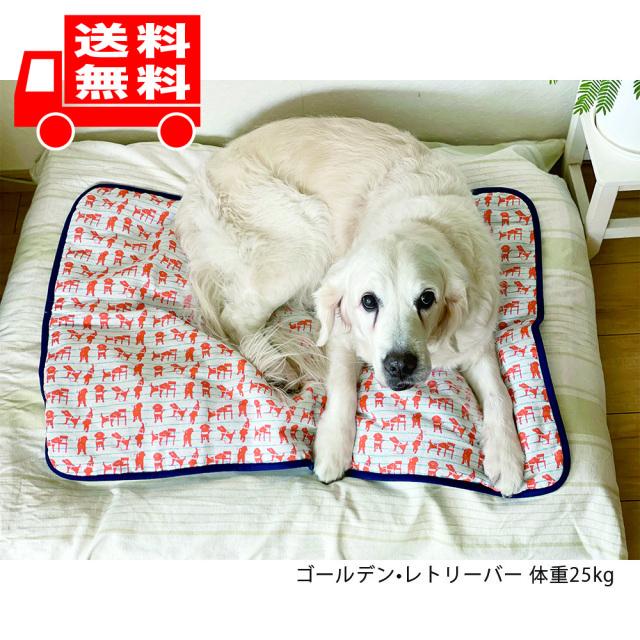 盲導犬チャリティーひんやりブランケット オレンジLサイズ