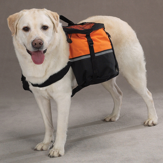 犬用デイパック・ドッグパク・オレンジ 装着例