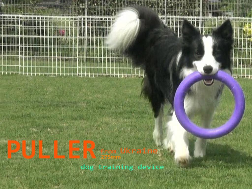 PULLERで遊ぶビショップ