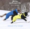 アルファアイコン2017
