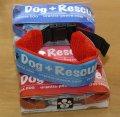 保冷剤で首を冷却するDog+Rescueクーリングカラー バックル式Sサイズ