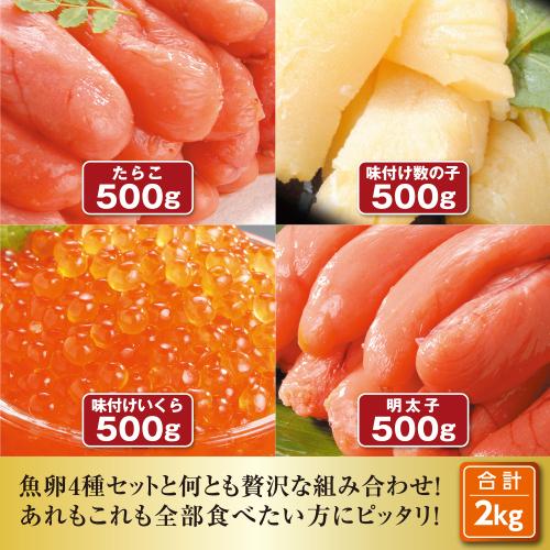 人気の魚卵4種 2kgセット