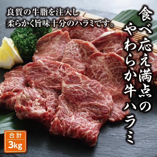 柔らか牛ハラミ焼肉 3kg