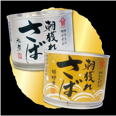 朝獲れさば缶詰 さば水煮缶 6缶+味噌煮缶 6缶セット