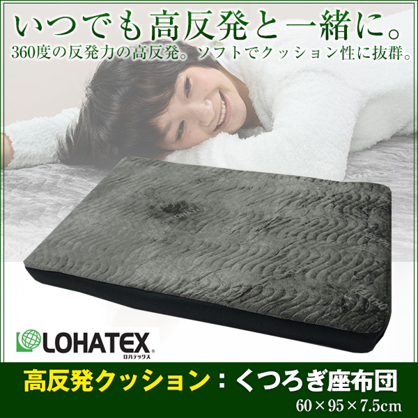 LOHATEX くつろぎ座布団 厚さ7.5cm ファスナー付アウトカバー 60×95×7.5cm 取り外し・洗濯可能