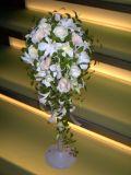 白バラとデンファレのキャスケードブーケ