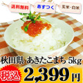 秋田県 選べる精米 1等米 あきたこまち 5kg 平成25年度産 ※新、消費税率8%を含む価格です。