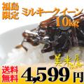 福島県 白米 1等 ミルキークイーン 5kg×2 平成24年産 【送料無料】北海道・沖縄・一部を除く ※新、消費税率8%を含む価格です。