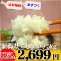 新潟県 1等米 こしひかり 白米 5kg×1 平成25年産 ※新、消費税率8%を含む価格です。