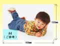 半光沢紙 カラーデータプリント【B0サイズ;1030x1456mm】