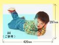 半光沢紙カラーデータプリント【 A3サイズ;297x420mm】