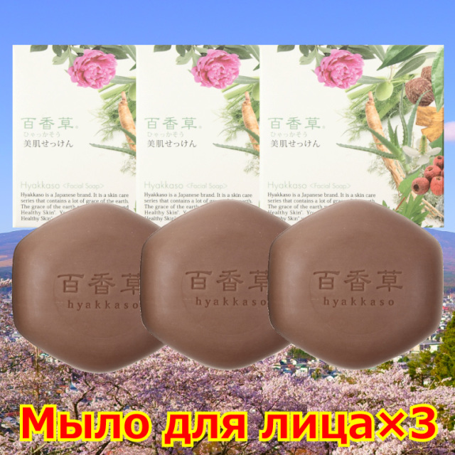 For Russia Facial Soap×3