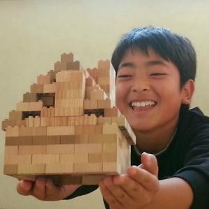 もくロック120MOKULOCK木製レゴブロック大きさ目安