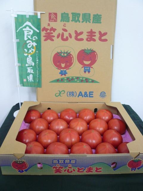 【産地直送】鳥取県産笑心とまと(えことまと)◆約4kg箱(大きさおまかせ)◆