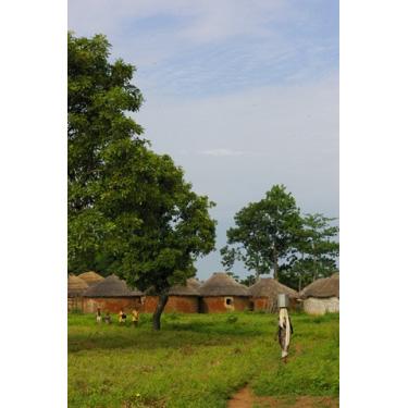 ポストカード「ゆったりと時の流れるズオ村の風景」