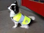 大特価!わんちゃん用の安全服☆Dog Safety Vest 201 yellow【メール便可能】