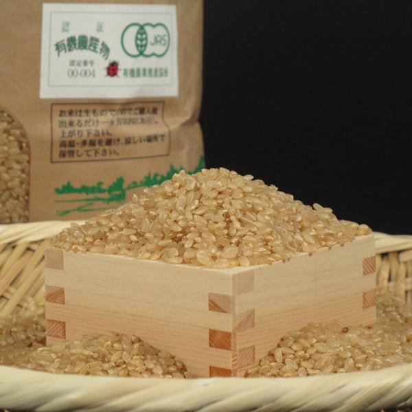 玄米イメージ