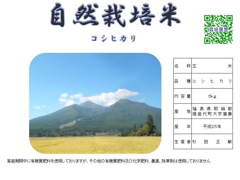 自然栽培米(玄米5㎏)