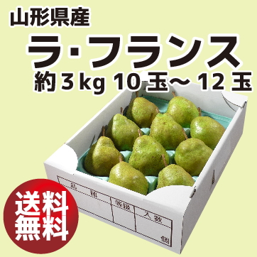 旬の味覚 山形県産 ラ・フランス 『秀 Lサイズ』約3kg 10〜12玉