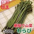 朝採り 新鮮 山形県産山菜 わらび 500g