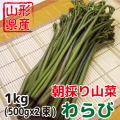 朝採り 新鮮 山形県産山菜 わらび 1kg