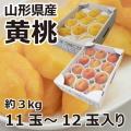 旬の味覚 山形県産 黄桃『黄金桃・黄貴妃』約3kg11〜12玉入り