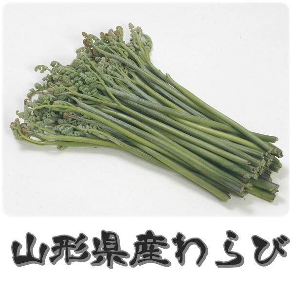 朝採り 山形県産山菜 わらび 1kg 【送料込・税込】