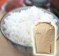静岡こしひかり玄米30kg