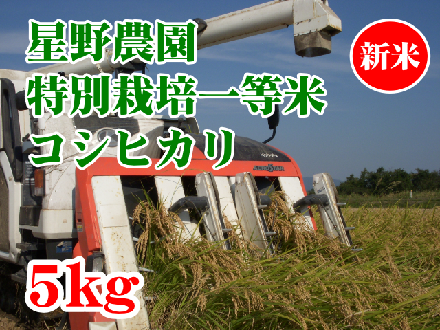 星野農園 特別栽培一等米 コシヒカリ5kg