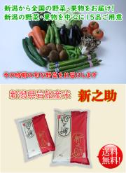 新潟県産野菜 果物 岩船産米 新之助セット