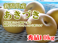 新潟県産 あきづき