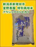 星野農園 特別栽培米 クラシックコシヒカリ