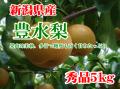 新潟県産 豊水梨