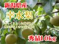 新潟県産 幸水梨