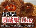 新潟県産 貯蔵栗 Lサイズ1kg※茨城県産2Lサイズと同等です