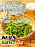 新潟県産くろさき茶豆