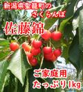 新潟県聖籠町佐藤錦