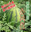 新潟県魚沼産 八色西瓜