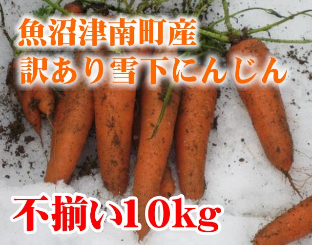 新潟県津南産 雪下にんじん