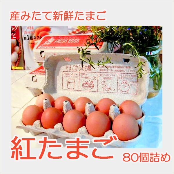 紅たまご 80個詰め   養鶏牧場の産直たまご通販ショップ 愛たまご