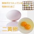 二黄卵 20個詰め 送料無料 | 養鶏牧場の産直たまご通販ショップ 愛たまご