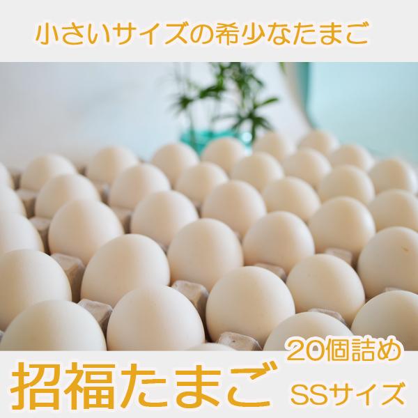 招福たまご(SSサイズ) 20個詰め  養鶏農場の産直たまご通販ショップ 愛たまご