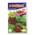 (サカタのタネ)ガーデンレタス レタス 4ml