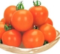(カネコ種苗)オレンジオーレ 中玉トマト 18粒