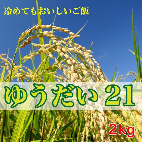 特別栽培米 会津産 減農薬 ゆうだい21 2kg