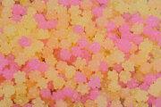 クリスタルコスモス金平糖バラ