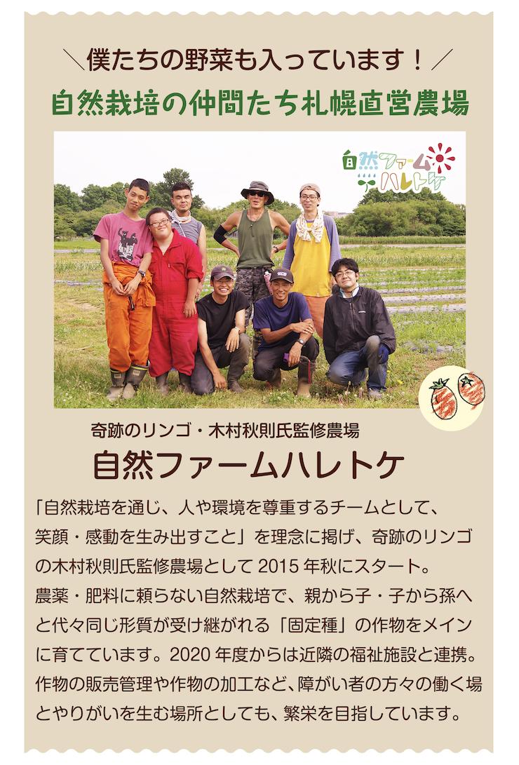 ごちそう野菜セットハレトケ紹介
