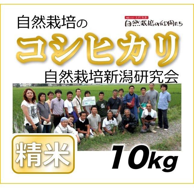 新潟コシヒカリ精米10kg