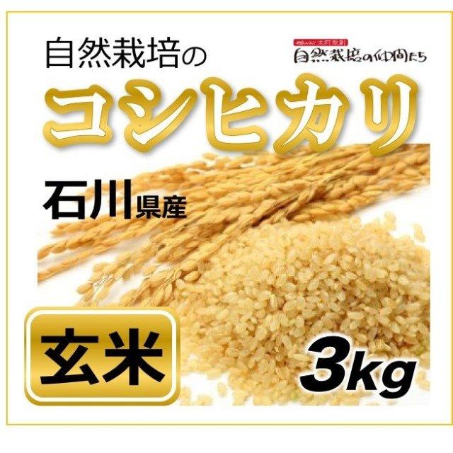 石川コシヒカリ玄米3kg